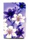 Чехол для Samsung Galaxy Tab T-385